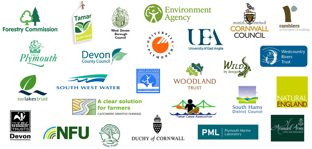 Tamar Catchment Partnership meeting – 31st July