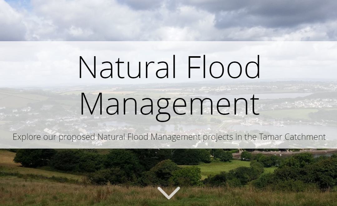 Project Proposals for Natural Flood Management