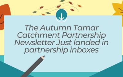 2020 Autumn Newsletter